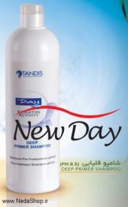 deep-primer-shampoo