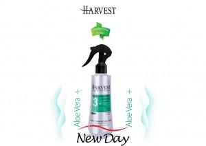 Spray -phase